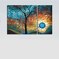 çerçevesiz set tuval 3adet el-boyalı, modern ağaç, güneş ay duvar sanat dekorasyon yağlıboya /