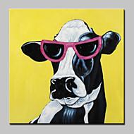 Ručně malované Zvíře Pop olejomalby,Moderní Jeden panel Plátno Hang-malované olejomalba For Home dekorace