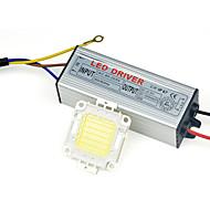 vysoký výkon vedl lampa klas čip s IP67 30W Řidič 110V - 240 V pro kutilství světlomet reflektor teplého / studená bílá (1 ks)