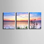 Landschap Bloemenmotief/Botanisch Modern,Drie panelen Canvas Verticaal Print Art Muurdecoratie For Huisdecoratie
