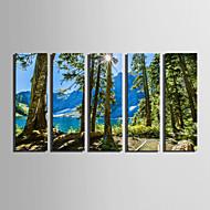 Pejzaž Cvjetni / Botanički Moderna,Pet ploha Platno Vertikalno Ispis Art Zid dekor For Početna Dekoracija