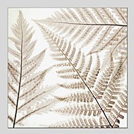 Kézzel festett Virágos / Botanikus Négyzet,Klasszikus Modern Egy elem Vászon Hang festett olajfestmény For lakberendezési