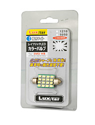 Car LED Light (16L-31MM-1210)
