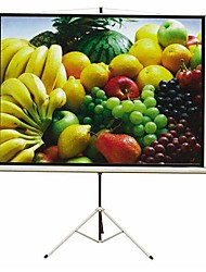 "100"" Projection Screen with Standing Shell (SMQC008)"
