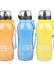 New Design High Quality Water Bottle With A Shield