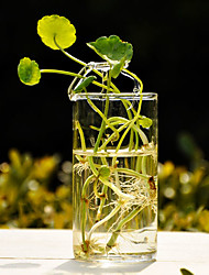 Simple Design Clear Glass Vase Centerpiece