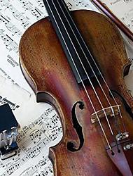 yinyi - (HYF-02) полноценный употреблять архаизмы Россия-еловых скрипка снаряжение (несколько размеров)