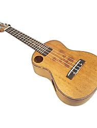 Tom - (tom231r) ukulele concerto de mogno com bag / picaretas
