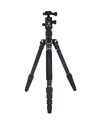 Benro Camera Tripod Kit A2691TB1
