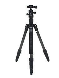 Benro Camera Tripod Kit C1691TB0