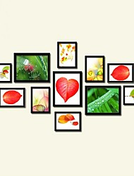 Photo Wall Frame Collection-Set von 11 PS-11