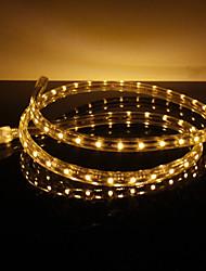 3.5W / M impermeable 3528 SMD luz blanca cálida Lámpara LED Strip (220V, seleccionable longitud)