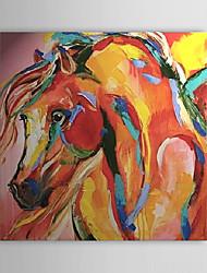 """Картина маслом, ручной работы, мотив """"Абстрактная Лошадь"""""""