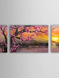 Hand-Painted Floral/BotanicalClassic / Traditional Three Panels Canvas Oil Painting For Home Decoration