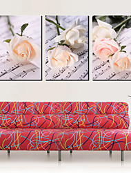 Stretched Canvas Art Floral Roses on Music Note Set of 3