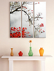 Leinwand Kunst Botanical Red Maple Set 3