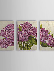 Hand Painted Oil Painting Floral Roses with Stretched Frame Set of 3 1309C-FL0859