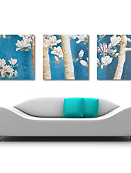 Stretched Canvas Art Botanical Blue Cast Set of 3