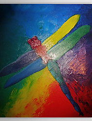 Hand Painted Oil Painting Abstract Dragonfly with Stretched Frame 1310-AB1151