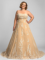 A-line Plus Sizes Wedding Dress - Champagne Chapel Train Strapless Chiffon