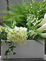 "27.5"" Fresh Green Calla Arrangement"