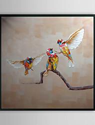 Колибри животных обрамленная картина маслом