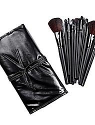 COLORDATE pincel de maquiagem profissional com bolsa de couro grátis 18 Pcs TS18003