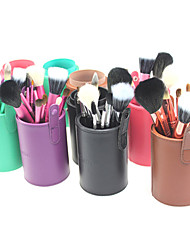 Pro High Quality 13 PCs Natural Goat Hair Makeup Brush Set with Color Brush Cylinder Tube(5 Color)