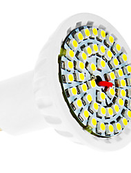 4W GU10 Spot LED 48 SMD 3528 360 lm Blanc Froid AC 100-240 V