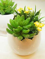 "5.1""H Modern Style Succulent Plants in Ceramic Vase"