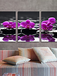 Canvas Set of 3 Floral Purple Lilac off the Shore Stretched Canvas Print Ready to Hang