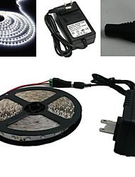5M 150X5050 Smd Branco Led Light Strip e Connector e AC110-240V para Dc12V3A Transformer