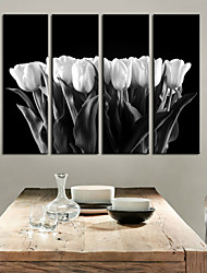 Stretched Canvas Print Art Botanical White Tulip Set of 4