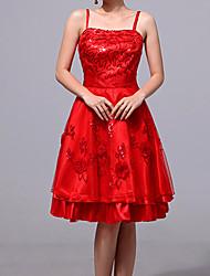 Stile cinese elegante vestito delle donne