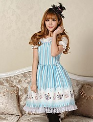 Beautiful Princess  Alice and Rabbit  Tea Party  Lolita Dress  Classy Lovely