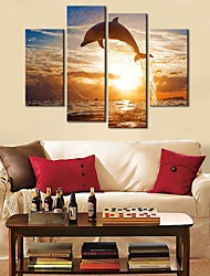 Canvas Art Animais Dolphin Conjunto de 4