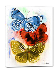 Hand Painted Oil Painting Animal Three Butterflies with Stretched Frame