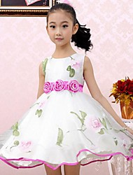 Girl's Floral Dress,Cotton / Chiffon / Organza Summer