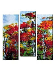Hand Painted  Modern Landscape Oil Painting with Stretched Frame Set of 3