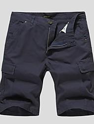 Мужские, прямые шорты, с карманами