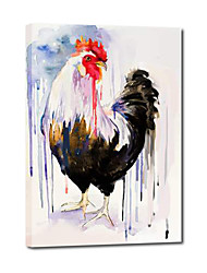 Hand Painted Oil Painting Animal Rooster Black And White with Stretched Frame