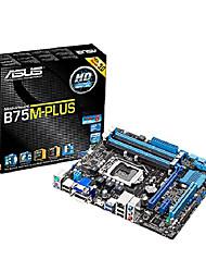 p8b75m + плюс Intel Core i7 / Core i5 / Core i3 ddr3 DIMM слотам PCI-E USB 2.0 / VGA / DVI / PS / 2 / rj45 материнской платы настольного Micro ATX
