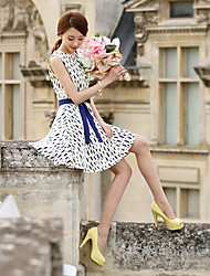 Cool Women's Fitted Skinny Long Sleeve Chiffon Dress
