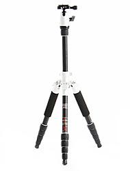 Fotopro X4i-E extérieure Voyage aluminium-alliage de magnésium télescopique de trépied pour appareil photo reflex numérique (ruban et noir)