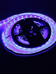 5M 72W 300x5050SMD Blue Light LED Strip Lamp (DC 12V)
