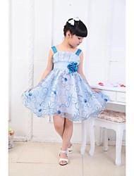 Encantadores de la manera Condole Roses Princesa bordada vestido de la muchacha