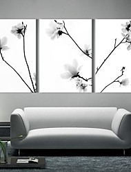 Stretched Canvas Art The Quiet Flowers Set of 3