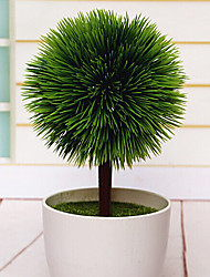 """10.4 """"H Pine ronde bal Plant in polytheen Vaas"""