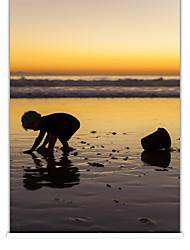 balnéaire photographique coucher de soleil store à enroulement