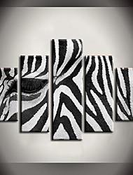 Pintados à mão pintura a óleo Corra para africanos Zebra Monte Pinturas de animais com Set quadro esticada de 5